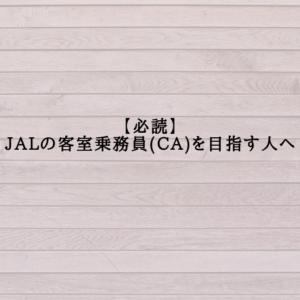 【必読】JALの客室乗務員(CA)を目指す人へ